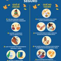 Safe Thanksgiving Tips - Spanish.jpg