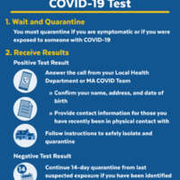 COVID-19 Test Next Steps - English.jpg