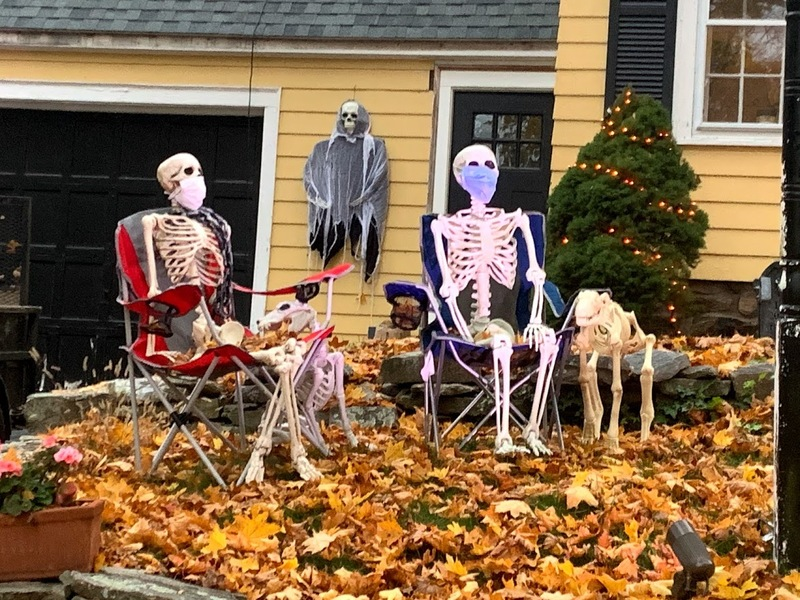 Socially Distanced Skeletons on Metcalf Street