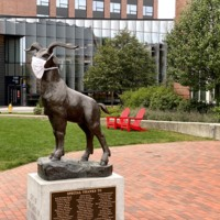 WPI Gompei Statue with Mask